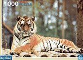 Play Time Puzzle Siberian Tiger