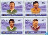 2002 Gaelic football spelers (IER 480)