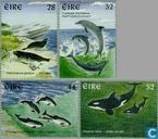 1997 Meeressäugetiere (IER 356)