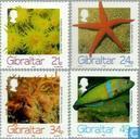 1994 Zeedieren (GIB 175)