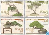 1999 Bonsai (SAN 486)