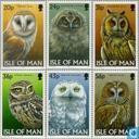1997 Owls (MAN 160)