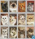 2003 Cats (NA 366)