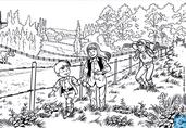 Zomerzoektocht: Ronse in de Vlaamse Ardennen