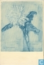 Chrysant ca 1900