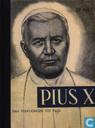 Comic Books - Pius X - Pius X, Van volksjongen tot paus