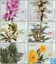 2000 Planten (MAD 55)