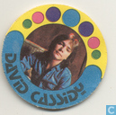 Sticker David Cassidy