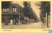 's Gravenzande. Langestraat