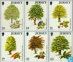 1997 Trees (JER 166)