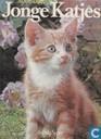 Snoezige jonge katjes