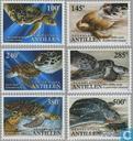 2004 Schildpadden (NA 384)