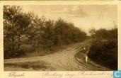 Ruurlo Boschweg langs Barchemsche weg.