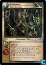 Lindenroot, Elder Sheperd