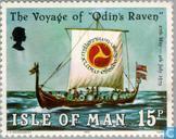Viking Odin's Raven