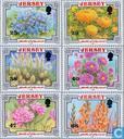 Blumenfest 1902-2002
