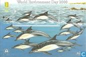 2000 Int. Journée de l'environnement 150