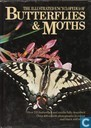 The illustrated encyclopedia of butterflies & moths