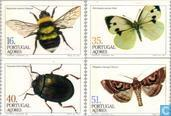 1984 Insects (AZO 14)