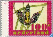 Postage Stamps - Netherlands [NLD] - Spring Flowers