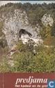 Predjama het kasteel en de grot