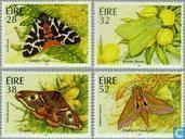 1994 Moths (IER 318)