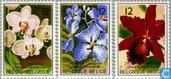 1985 Ghent Flower (BEL 791)