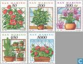 1992 Plants (SAN 409)