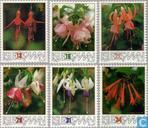 1988 Fuchsia Society 1938-1988 (MAN 93)