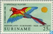 Lijndienst Amsterdam-Paramaribo 1946-1971