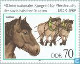 Paardenkweek