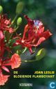 De bloeiende flamboyant