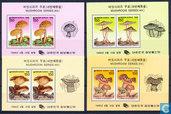 Native mushrooms