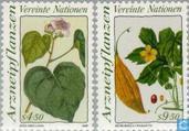 1990 plantes médicinales (VNW 55)