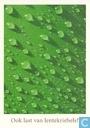 """B001581 - Heineken """"Ook last van lentekriebels?"""""""