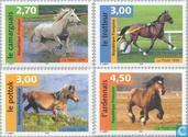 1998 Horses (FRA 1668)