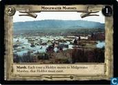 Midgewater Marshes