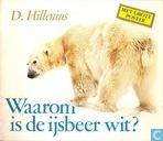 Waarom is de ijsbeer wit?
