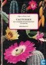 Cactussen en andere succulenten in kleur