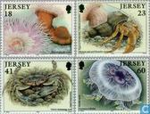 1994 Zeedieren (JER 139)