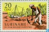Bauxite Industry 1916-1966