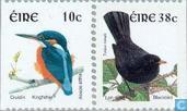 2002 Birds (IER 461)