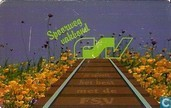 Spoorwegvakbond FSV