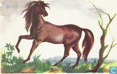 Het paard als kostbaar hulpmiddel