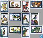 2006 oiseaux (NA 410)