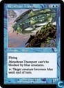Metathran Transport
