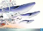 De droom van een walvis