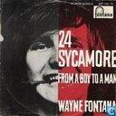 24 Sycamore