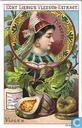 Früchte und Schönheiten I