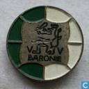 V V Baronie